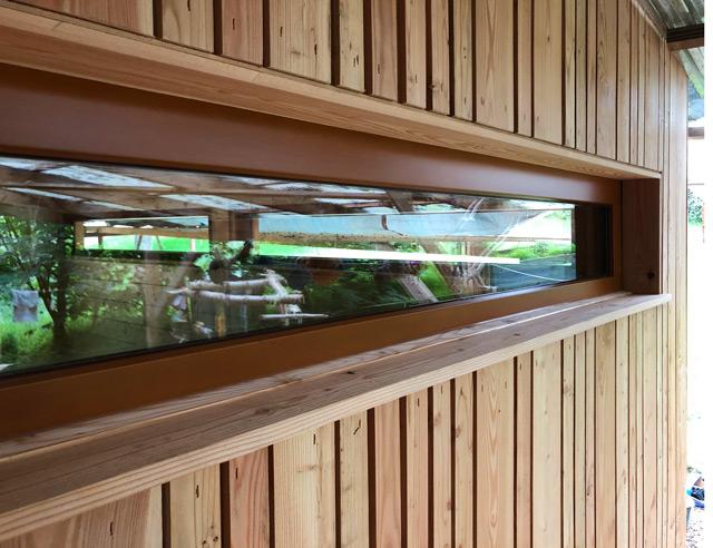 Detailaufnahme Fenster